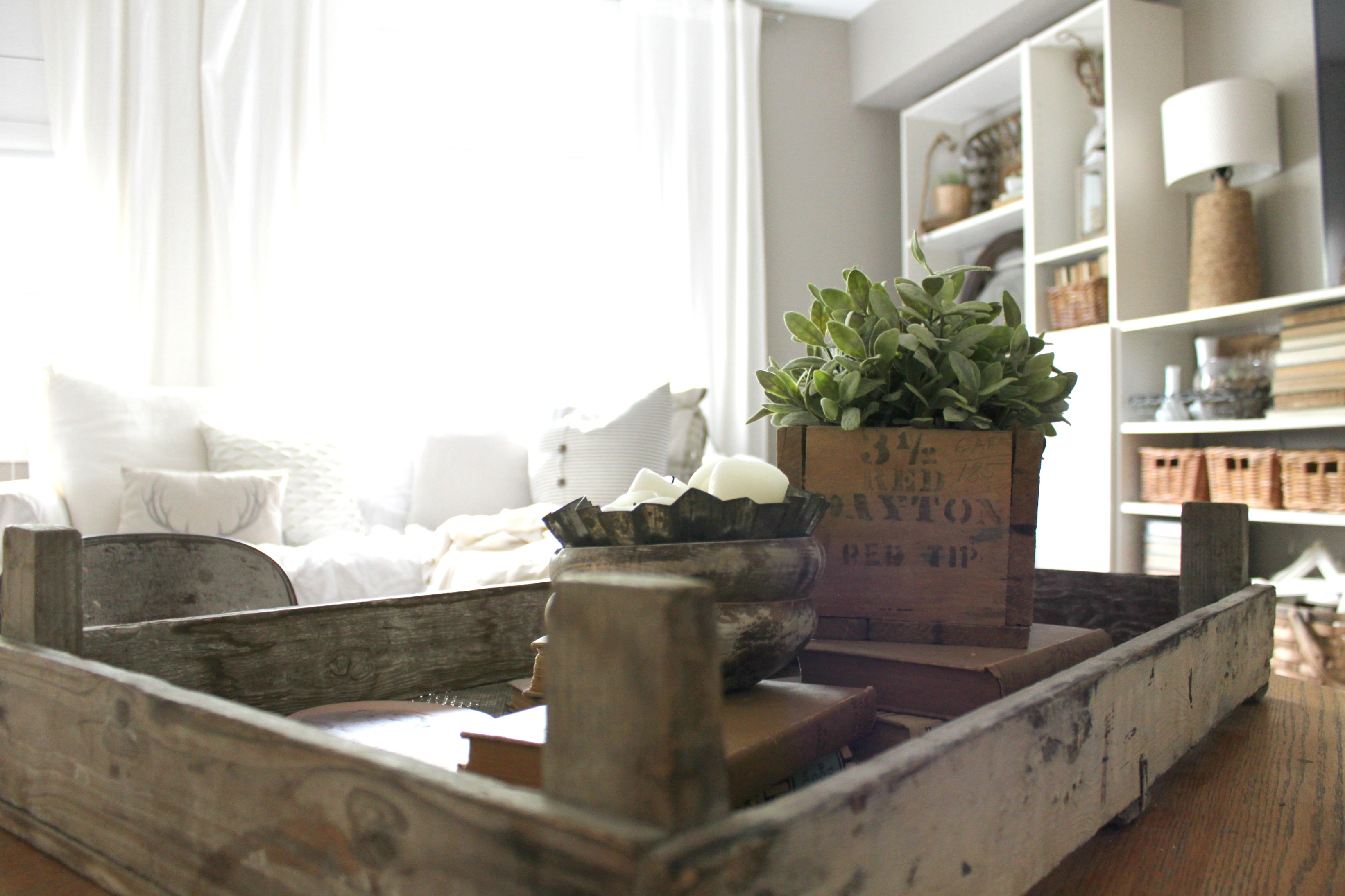ikea-curtains-bookcases-plants